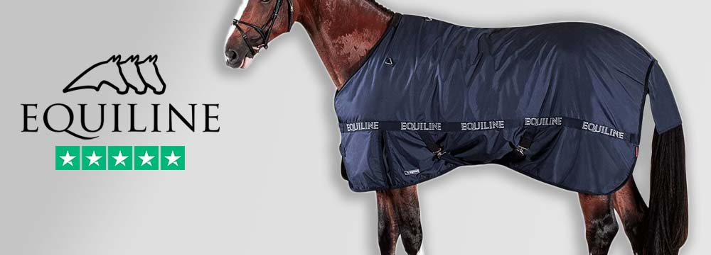 25% Discount on Equiline 200gr Rug: take advantage now!