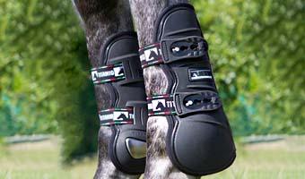 Tendon Boot Lorenzini - Special Price